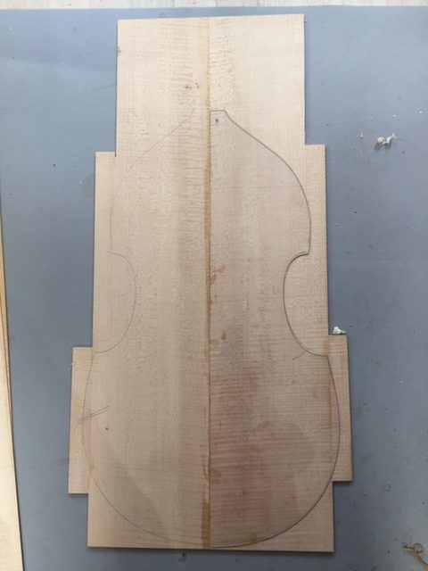 Sycamore back drawn out