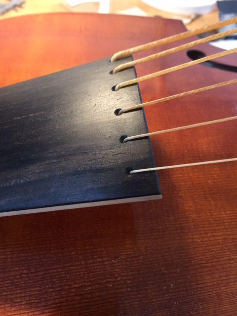 Close up of set up finished viol